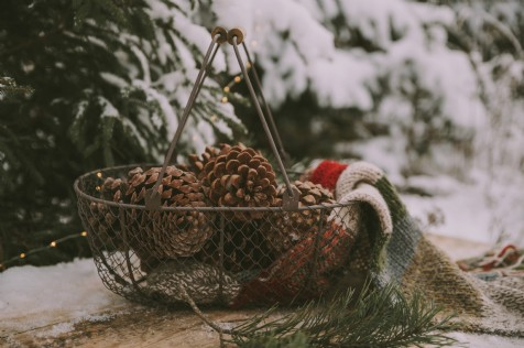 Christmas Styling Trends for 2019