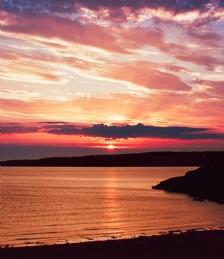 Isle of Ewe Stardust