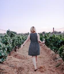 Great British Vineyards