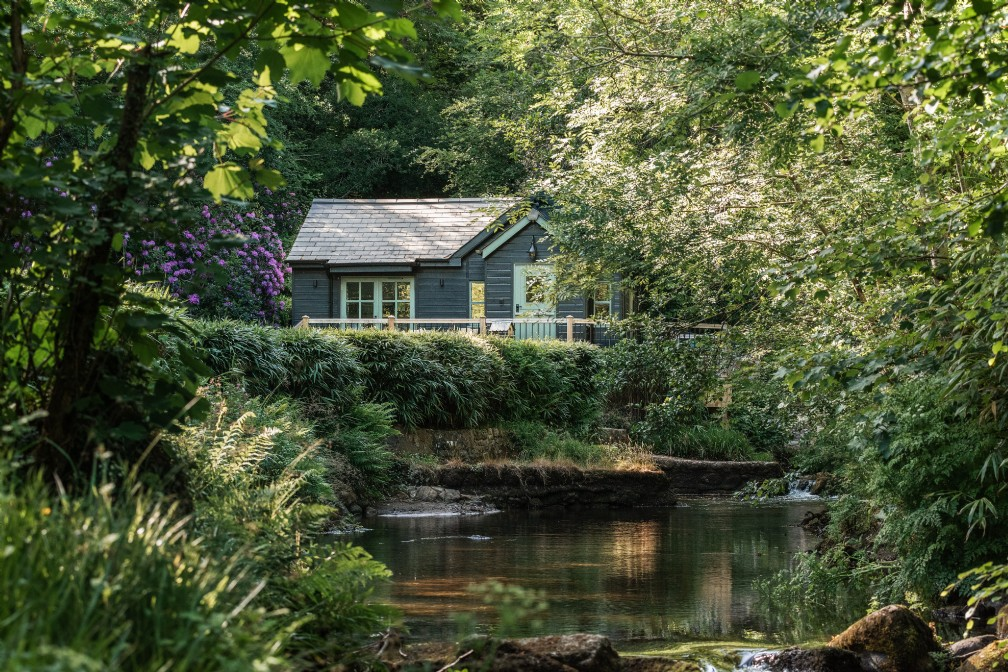 Damselfly | Luxury Self-Catering Woodland Cabin | St Neot, Cornwall
