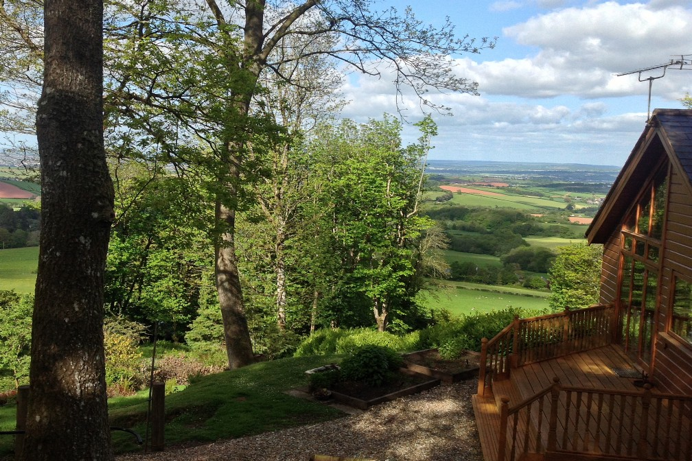 Ashcombe Forest woodland property for sale, Doddiscombsleigh
