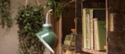 Little Portion luxury self-catering cottage near Polly Joke