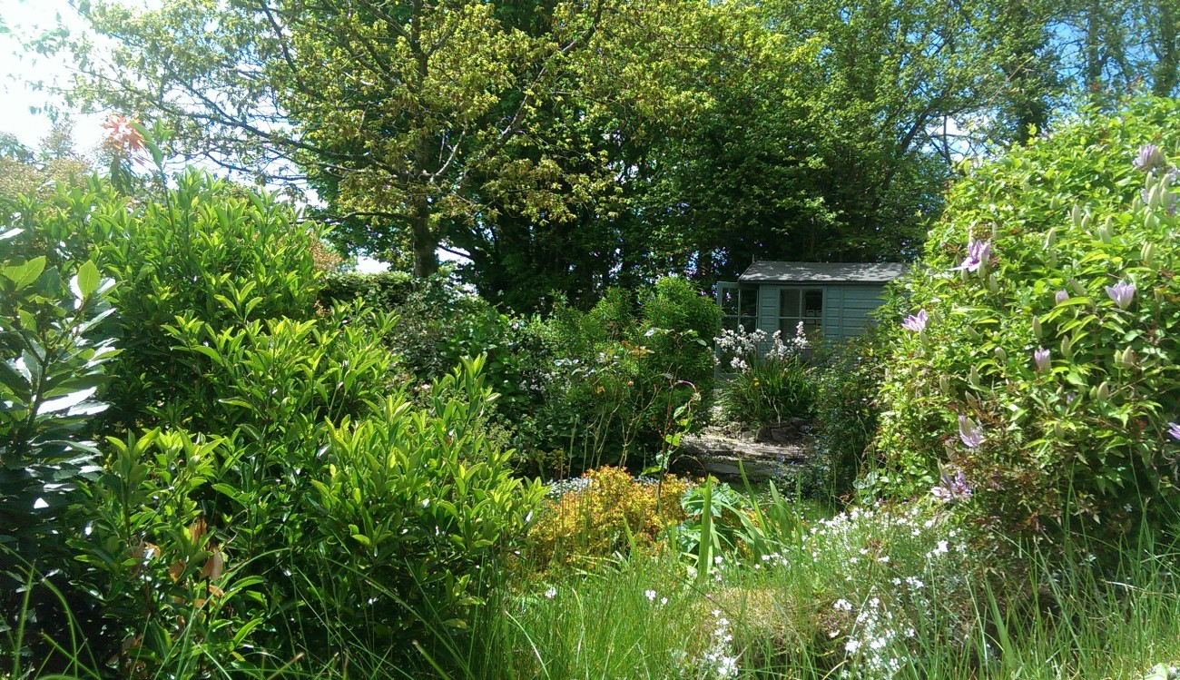 Rilla Mill Moorland Property for Sale, Bodmin Moor, North Cornwall
