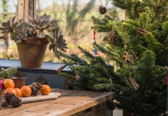 Christmas at Sundance Cottage, Watergate Bay