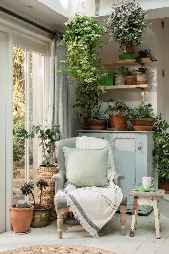 The sun room laden with hanging lush plants