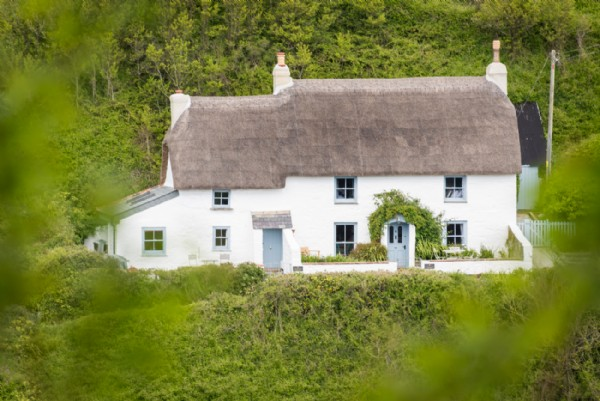 Peachy The Sea Rose Luxury Self Catering Cottage Cadgwith Cove Home Interior And Landscaping Ologienasavecom