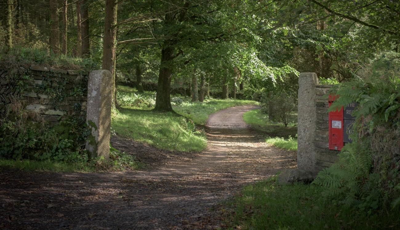 Valency Wood