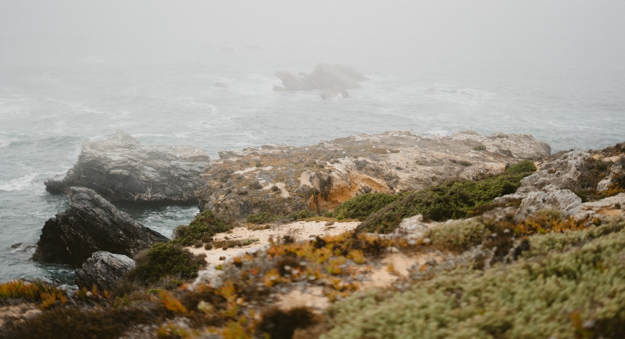 Rocks in Sea Mist | Coastal Retreats