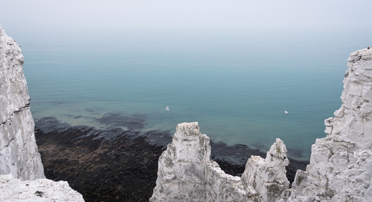 White Cliffs of Dover | Stefan Daniel